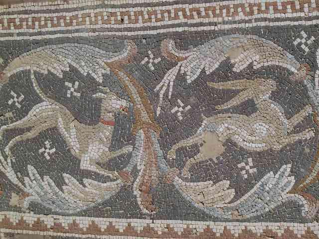 save off biggest discount low price Mosaics of Jordan